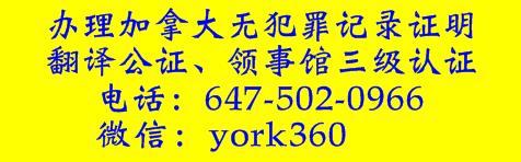 交通告票,多伦多交通告票,多伦多交通告票专家